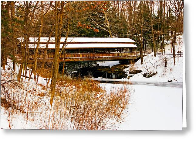 Mill In Woods Photographs Greeting Cards - Lantermans  in the Snow Greeting Card by Marcia Colelli