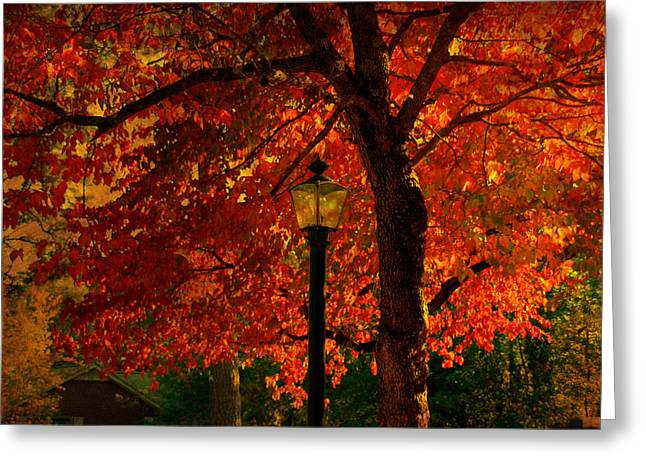Fall Scene Greeting Cards - Lantern in autumn Greeting Card by Susanne Van Hulst