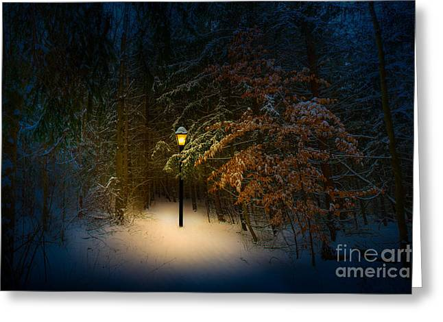 Aslan Greeting Cards - Lantern In The Wood Greeting Card by Michael Arend