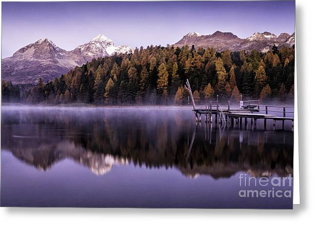 Pontresina Greeting Cards - Larch Pine Reflections Greeting Card by Timothy Hacker