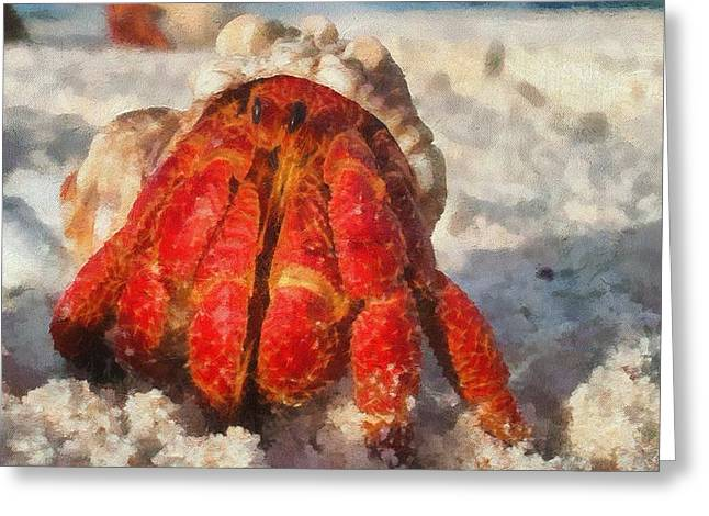 Beach Photography Mixed Media Greeting Cards - Large Hermit Crab On The Beach Greeting Card by Dan Sproul