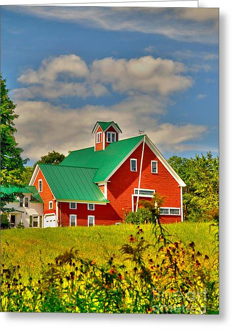 Old Maine Barns Greeting Cards - Large Red Barn Greeting Card by Alana Ranney