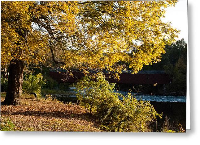 Geobob Greeting Cards - Large Spreading Oak on Banks of West River West Cornwall Connecticut Greeting Card by Robert Ford