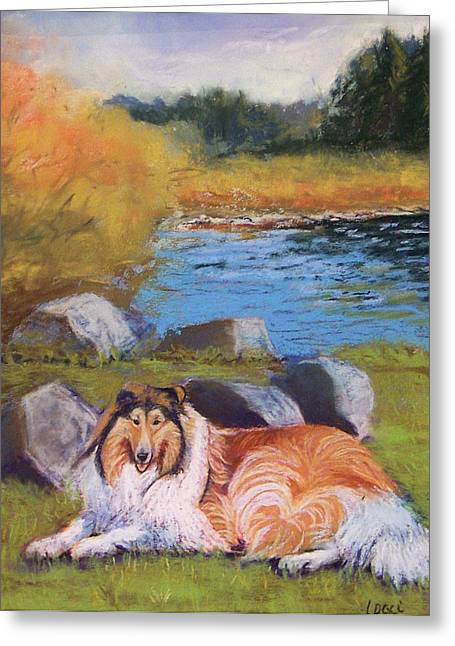 Collie Pastels Greeting Cards - Lassie of the Lake Greeting Card by Laurie Paci