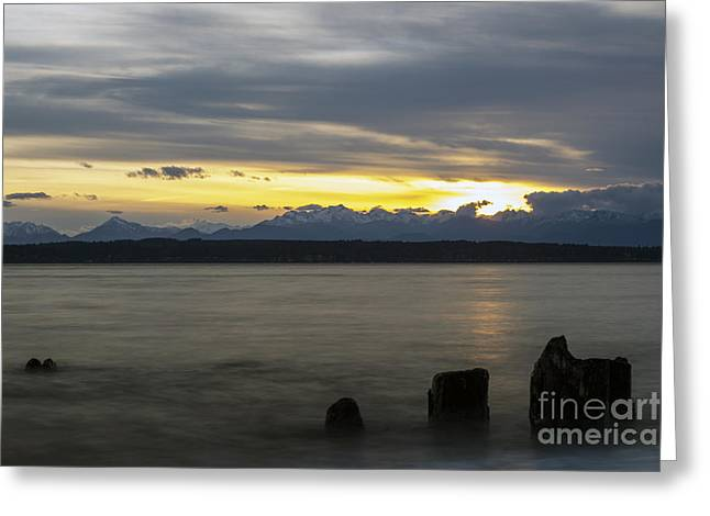 Puget Sound Greeting Cards - Last Breath Greeting Card by Michael DeMello