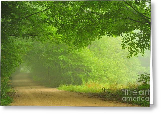 Country Greeting Cards - Last Breath of Summer Greeting Card by Terri Gostola