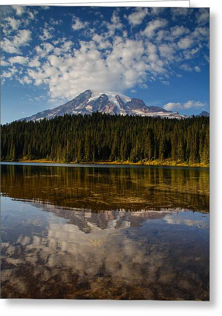 High Country Greeting Cards - Last Day of Summer Greeting Card by Angie Vogel