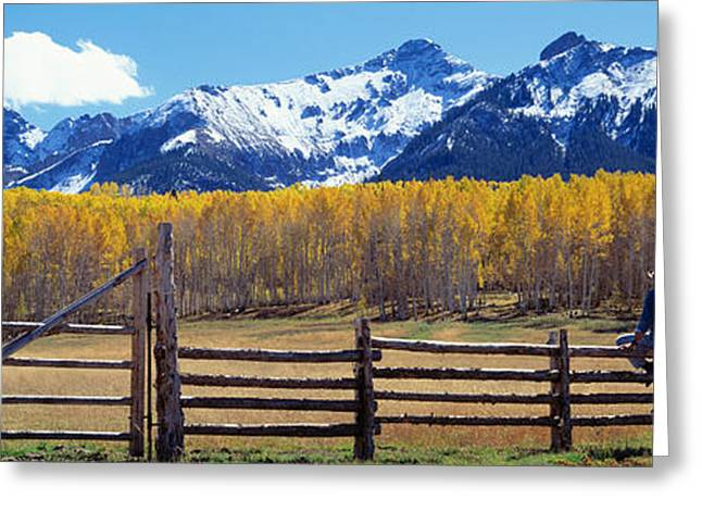 Wooden Fence Greeting Cards - Last Dollar Ranch, Ridgeway, Colorado Greeting Card by Panoramic Images
