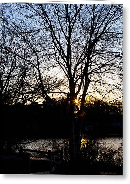 Michelle Greeting Cards - Last Golden Glow Long Pond Sunset Greeting Card by Michelle Wiarda