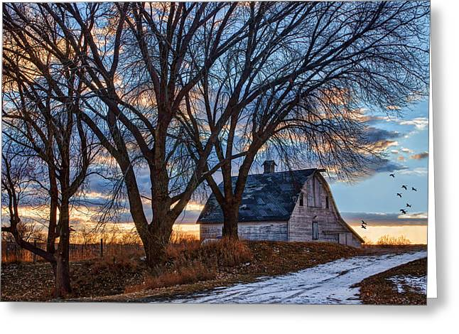 Snowy Evening Greeting Cards - Last Kiss of Day Greeting Card by Nikolyn McDonald