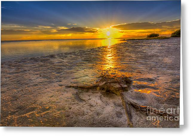 Calm Seas Greeting Cards - Last Light Over the Gulf Greeting Card by Marvin Spates