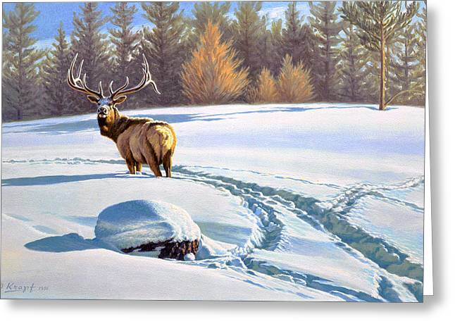 Elk Wildlife Greeting Cards - Last Look  -Elk Greeting Card by Paul Krapf