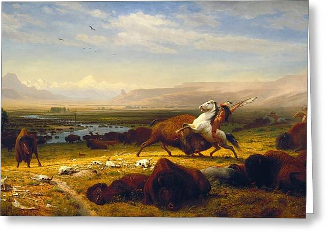 Bierstadt Greeting Cards - Last Of The Buffalo Greeting Card by Albert Bierstadt
