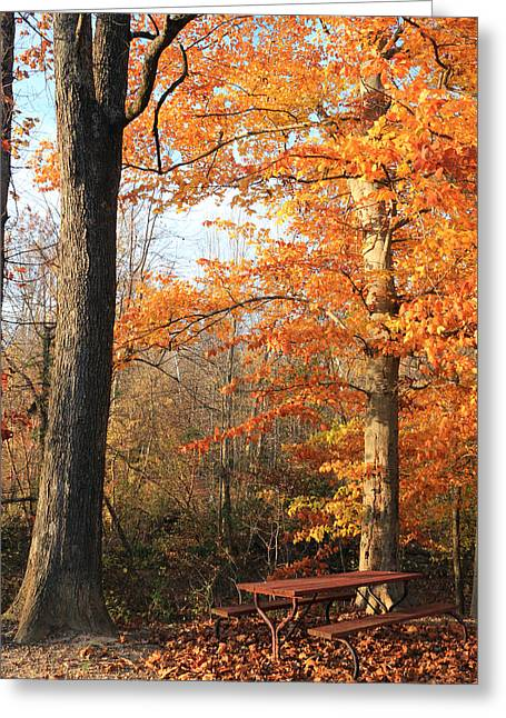 Get Well Card Framed Prints Greeting Cards - Last Picnic Greeting Card by Lorna Rogers Photography
