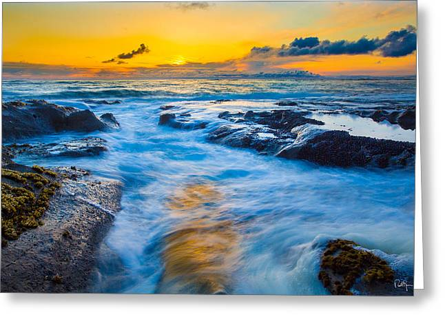 Tide Pools Greeting Cards - Last Rays Greeting Card by Robert Bynum