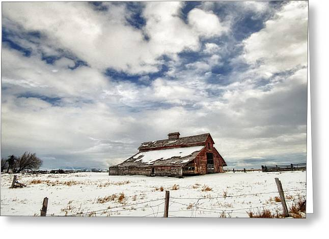 Snow Covered Ground Greeting Cards - Last Snow Barn Greeting Card by Mary Jo Allen