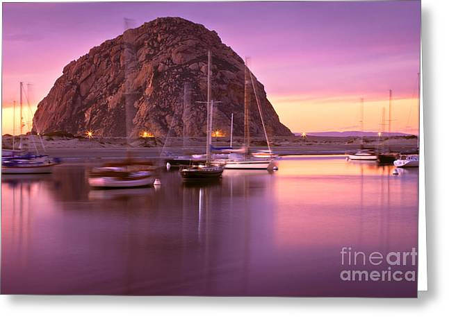 Morro Bay Ca Greeting Cards - Last Sunset Greeting Card by Laura Dienzo
