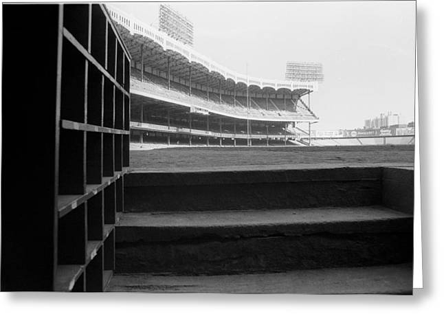 Baseball Stadiums Greeting Cards - Last View From The Yankee Dugout  Greeting Card by Ross Lewis