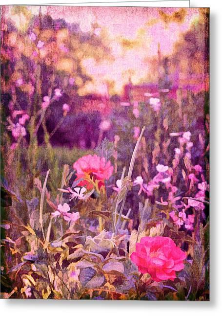 Pamela Cooper Greeting Cards - Last Years Garden Greeting Card by Pamela Cooper