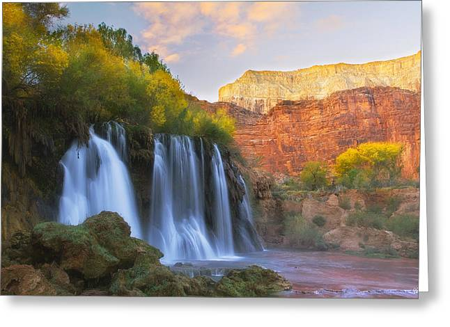 Northern Arizona Greeting Cards - Lasting Impressions Greeting Card by Peter Coskun