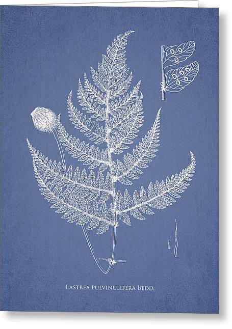 Fern Greeting Cards - Lastrea pulvinulifera Greeting Card by Aged Pixel