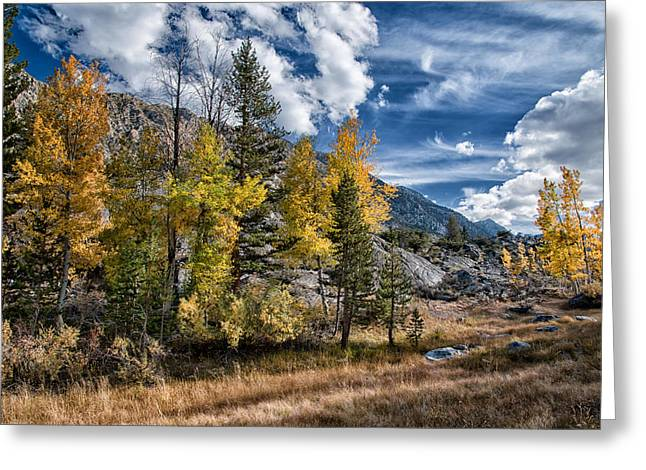 Hiking Greeting Cards - Late Afternoon in the Fall Greeting Card by Cat Connor