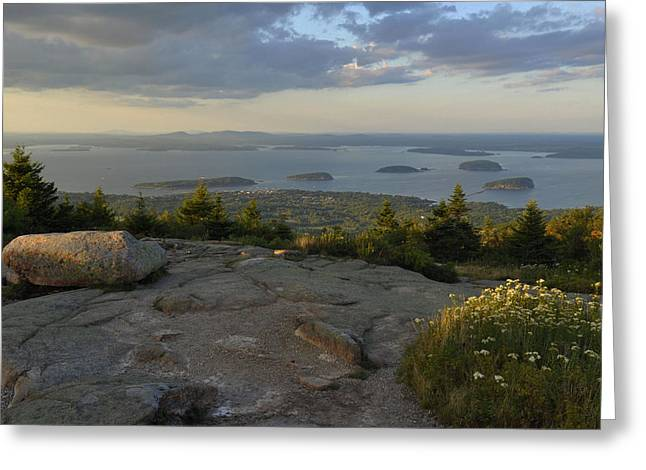Mt. Desert Island Greeting Cards - Late Afternoon Light Greeting Card by Stephen  Vecchiotti