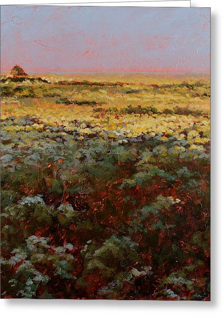 Carlynne Hershberger Greeting Cards - Late Afternoon Prairie Greeting Card by Carlynne Hershberger