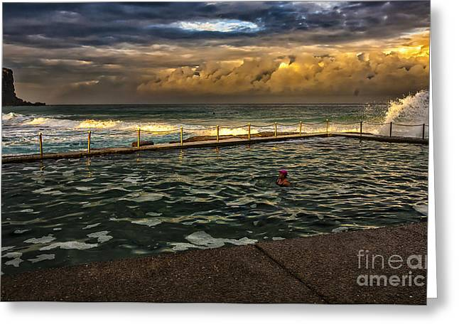 Swimmers Greeting Cards - Late afternoon swimmer Greeting Card by Sheila Smart