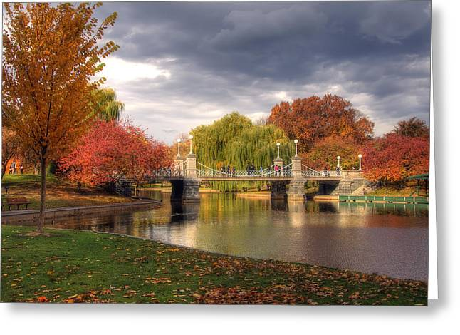 Pond In Park Greeting Cards - Late Autumn Greeting Card by Joann Vitali