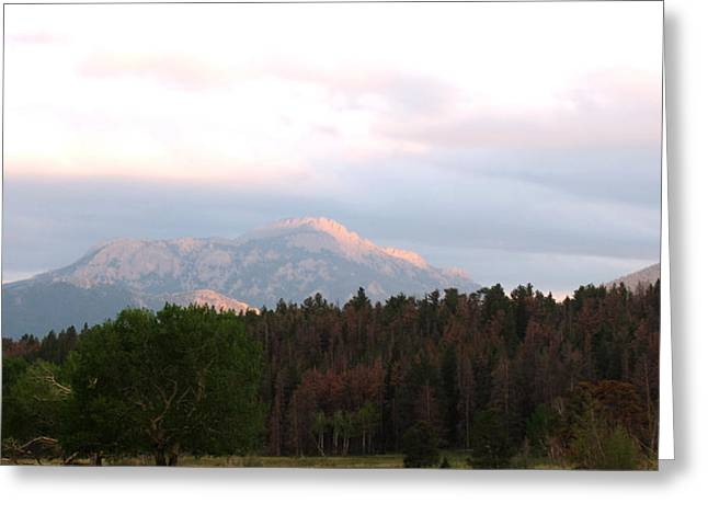 Kitten Prints Greeting Cards - Late Day in the Grand Tetons Greeting Card by Phil Welsher