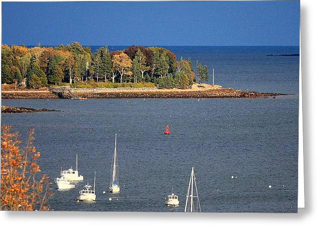 Greening Greeting Cards - Late Day Sun Over Greening Island Maine Greeting Card by Dana Moos