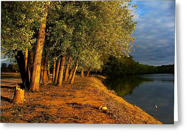 Williams Dam Greeting Cards - Late Evening on White River Greeting Card by Julie Dant