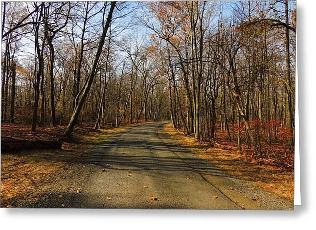 Late Fall At Cheesequake State Park Greeting Card by Raymond Salani III