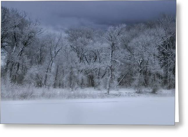 Late Snow At The Rio Grande Greeting Card by Ellen Heaverlo