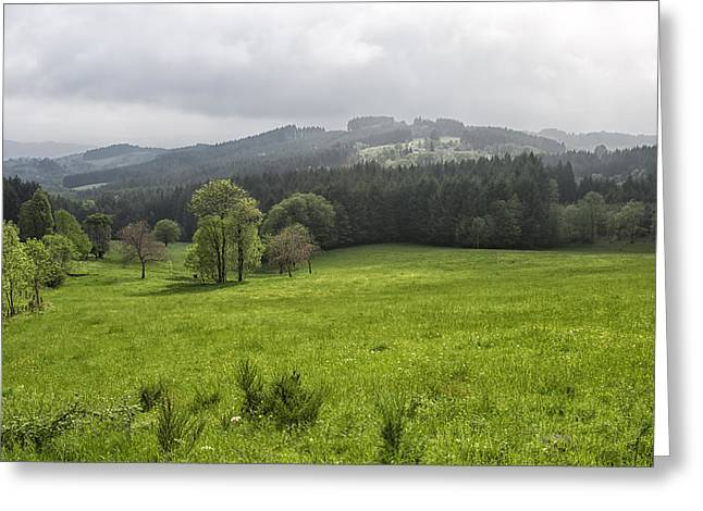 Paradise Road Greeting Cards - Late Spring Greeting Card by Nomad Art And  Design