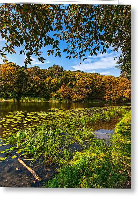 Fall Colors Greeting Cards - Late Summer at the Lake 2 Greeting Card by Matthew Shalvatis