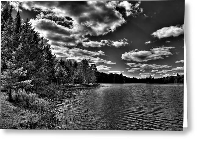 Old And New Greeting Cards - Late Summer at Twin Ponds Greeting Card by David Patterson