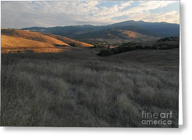 California Hills Greeting Cards - Late Summer Evening in the Santa Teresa Hills Greeting Card by Stu Shepherd