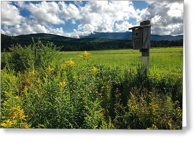 Charlotte Vermont Greeting Cards - Late Summer in Vermont Greeting Card by William Alexander