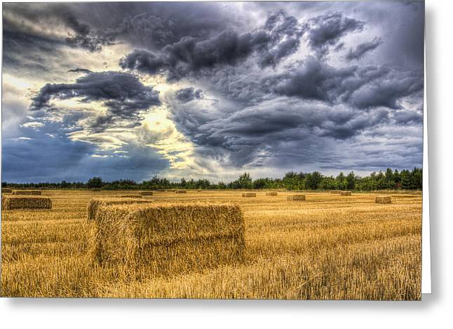 Making Hay Greeting Cards - Late Summer on the farm Greeting Card by David Pyatt