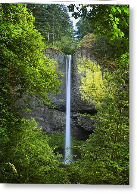 Plunge Greeting Cards - Latourell Falls Greeting Card by Jon Ares