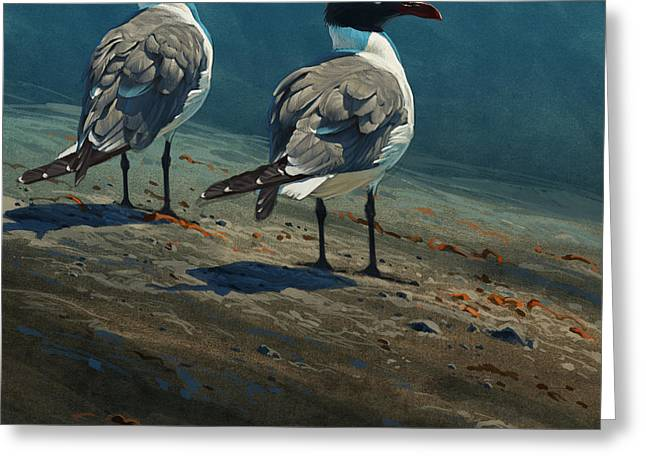 Sea Birds Greeting Cards - Laughing Gulls Greeting Card by Aaron Blaise