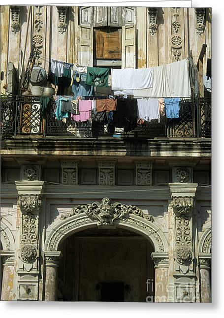 Washday Greeting Cards - Laundry day Greeting Card by James Brunker