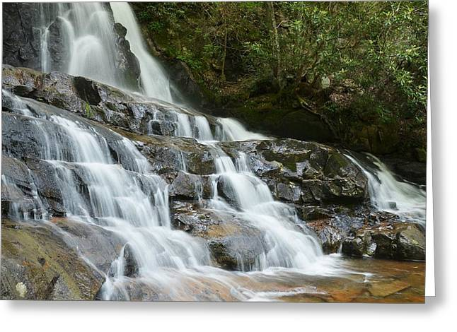 Moss Green Greeting Cards - Laurel Falls Greeting Card by Mel Steinhauer