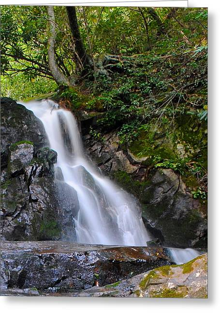Marvelous View Greeting Cards - Laurel Falls Greeting Card by Frozen in Time Fine Art Photography