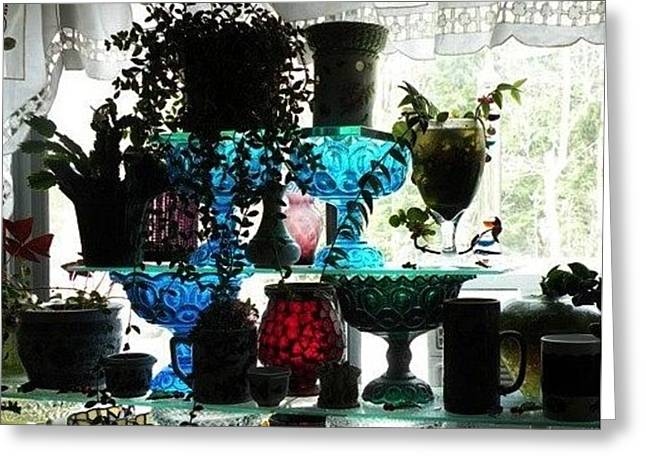Glass Vase Greeting Cards - Laurels Window Greeting Card by Carlee Ojeda