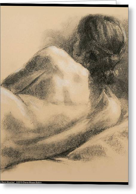 Old Masters Drawings Greeting Cards - Laurens Back Muscles Greeting Card by Diana Moses Botkin
