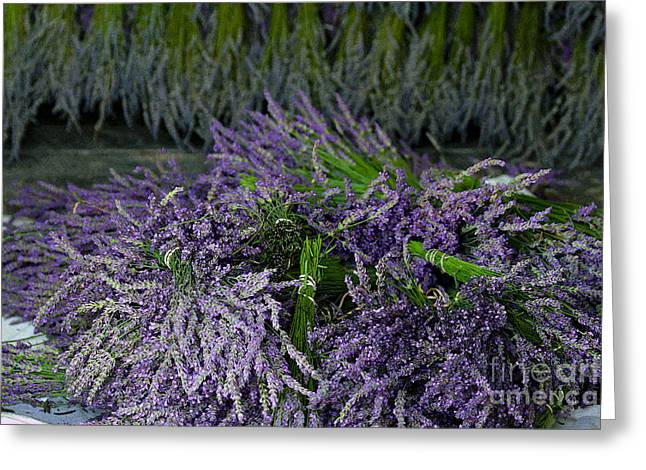Drying Rack Greeting Cards - Lavender Bundles Greeting Card by Catherine Sherman