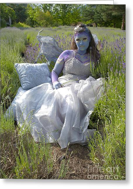 Third Estate Greeting Cards - Lavender Fairy Queen Greeting Card by Graham Foulkes